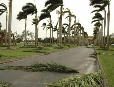Could-Your-Business-Survive-a-Natural-Disaster